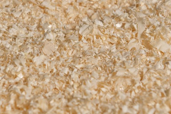 Woodshavings